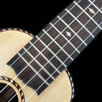 Alte Musik mit der Ukulele (Audiodateien)